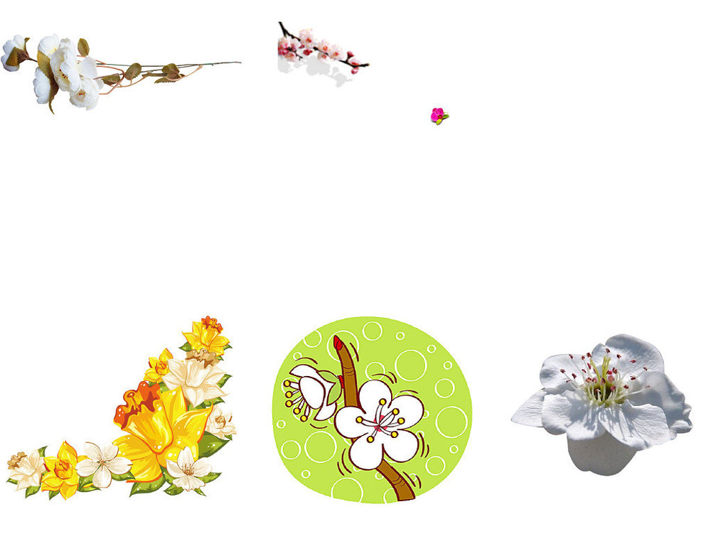 中国风水墨画梨花ps设计装饰素材1