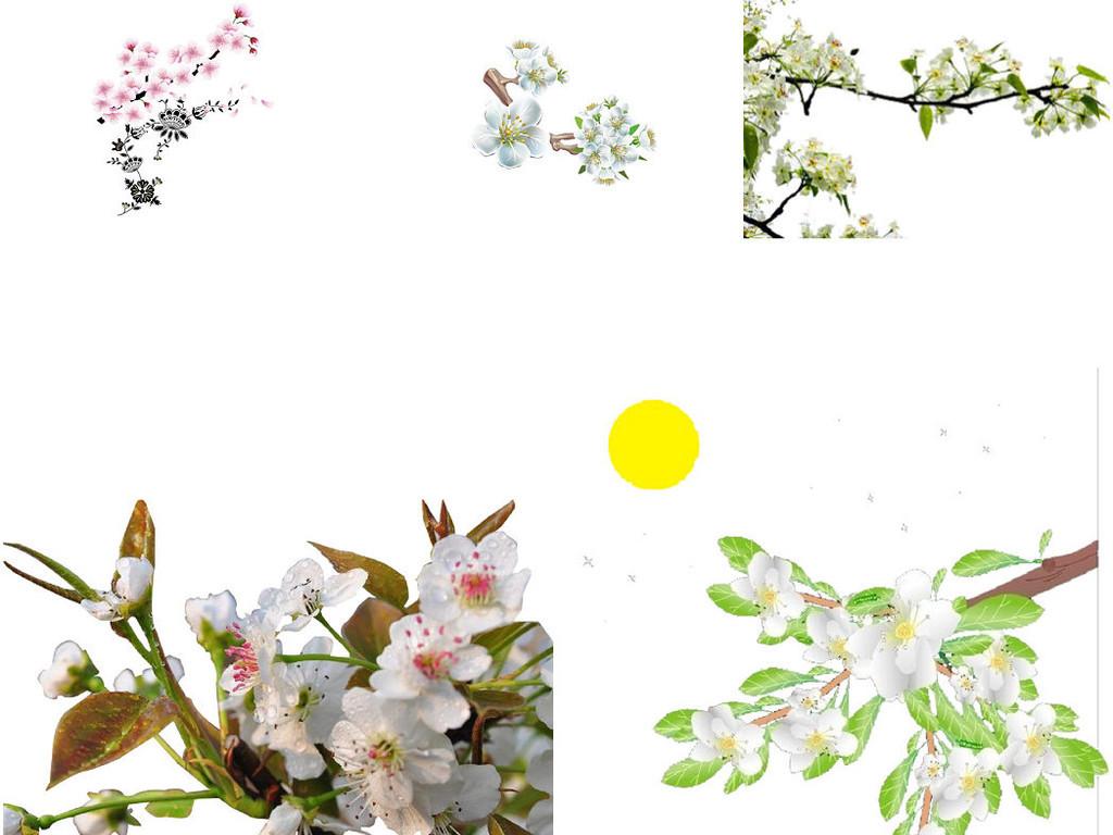 中国风水墨画梨花ps设计装饰素材2