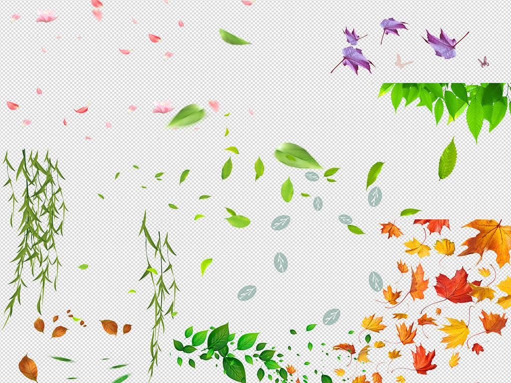 png)                                  花瓣飘落
