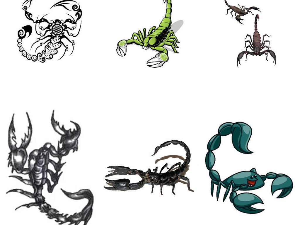 动物蝎子免抠png图片素材3