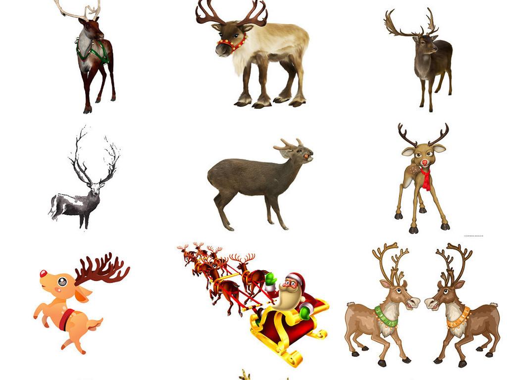 设计作品简介: 动物驯鹿卡通圣诞鹿海报设计素材2 位图, rgb格式高清