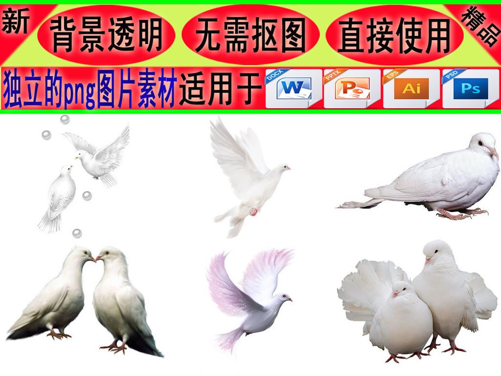 飞行类动物png素材鸽子免抠png素材1
