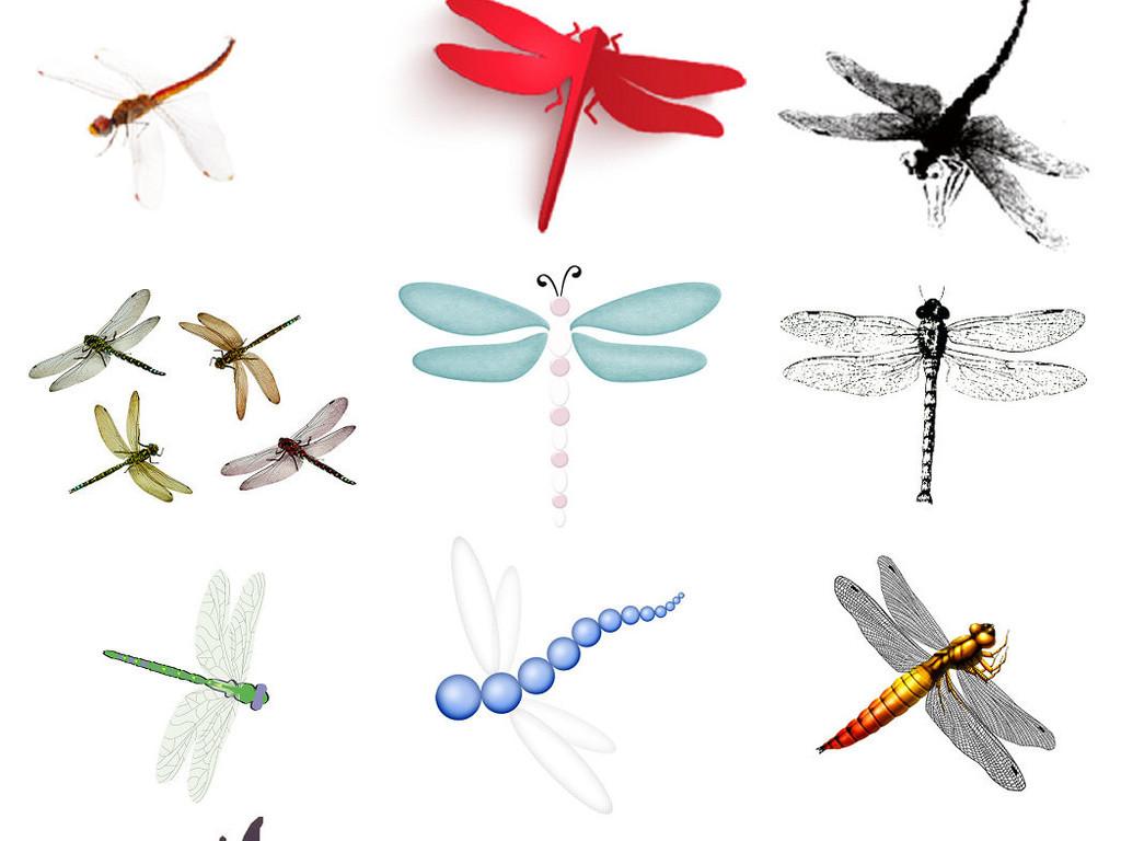 免抠png卡通可爱小蜻蜓图片大全2