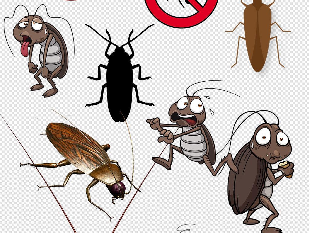 卡通蟑螂动物设计png透明背景免扣素材图片