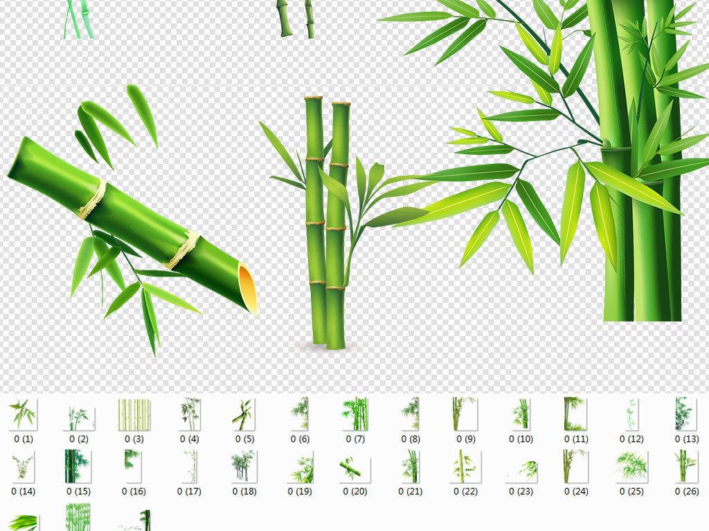 卡通手绘竹子水彩竹子竹叶图案树叶青竹竹子图片竹子水墨画梅花竹子