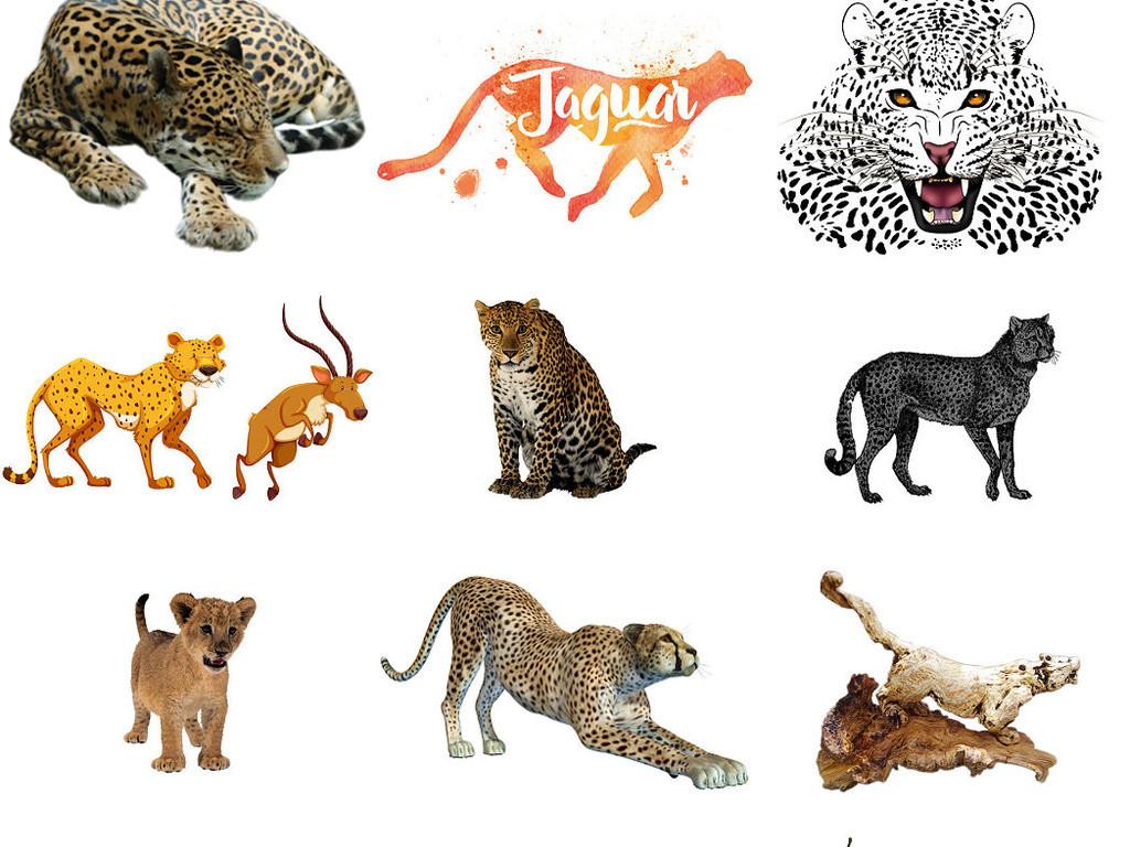 动物猎豹免抠png设计素材