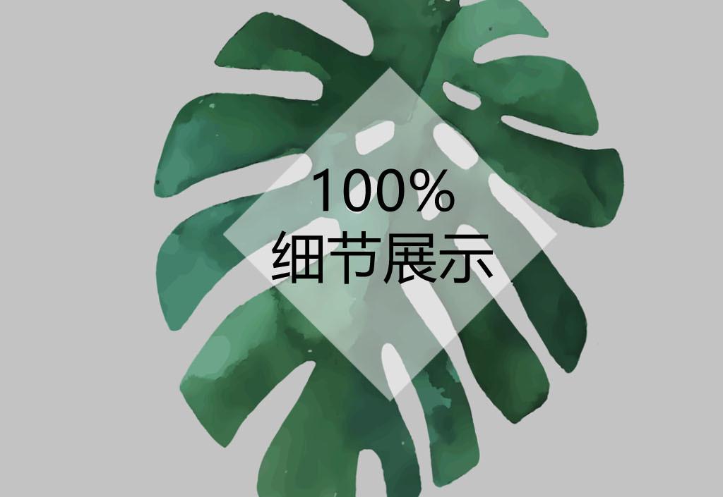 北欧简约小清新叶子植物无框装饰画图片