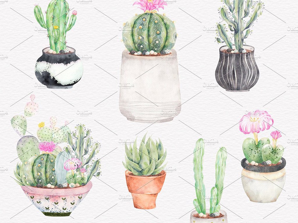 边框仙人球水彩手绘植物仙人掌元素多肉植物植物手绘手绘元素手绘高清