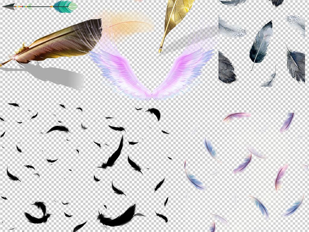 白色羽毛黑色孔雀飘落羽毛翅膀png素材