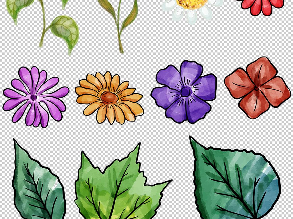 手绘植物花朵小草元素png素材