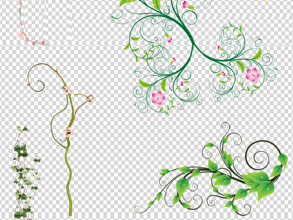 藤树藤边框藤条树藤叶子藤蔓绿色树叶树叶花藤绿色树藤绿藤花藤图片绿