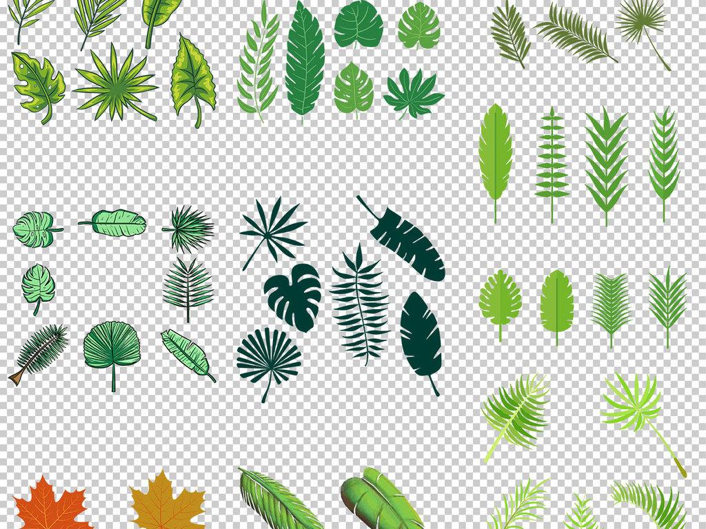 花藤树叶边框素材彩色树叶装饰素材叶子手绘叶子免抠素材叶子手绘插图