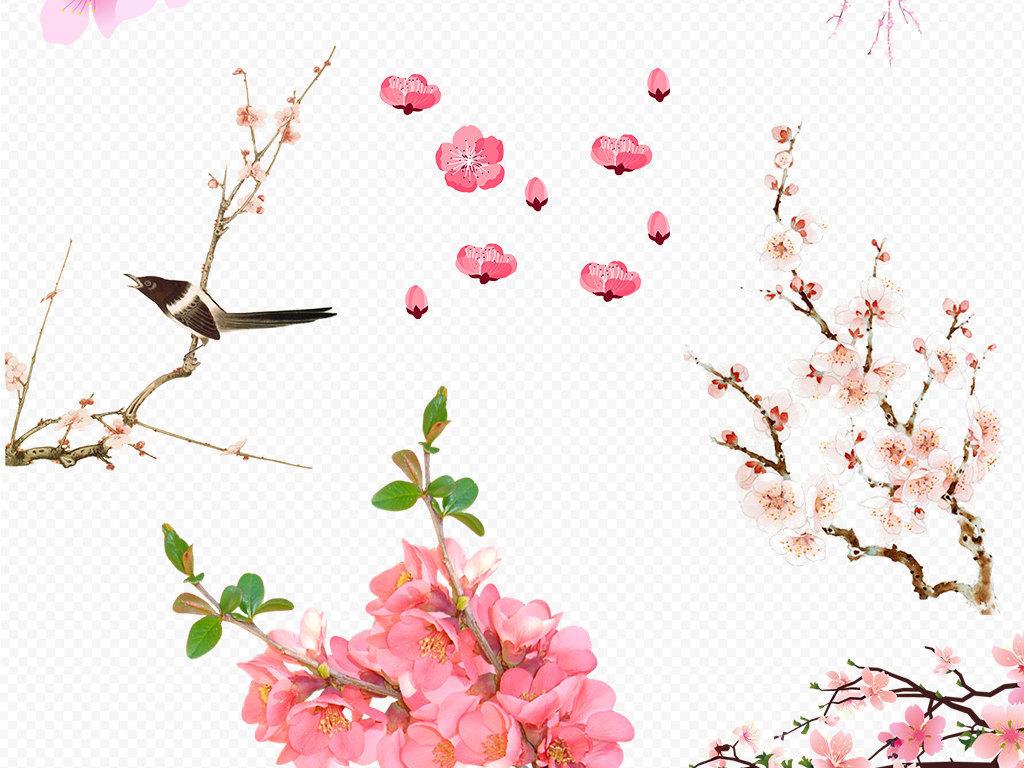 粉红色桃花梅花樱花花朵图片素材图片下载png素材 花卉