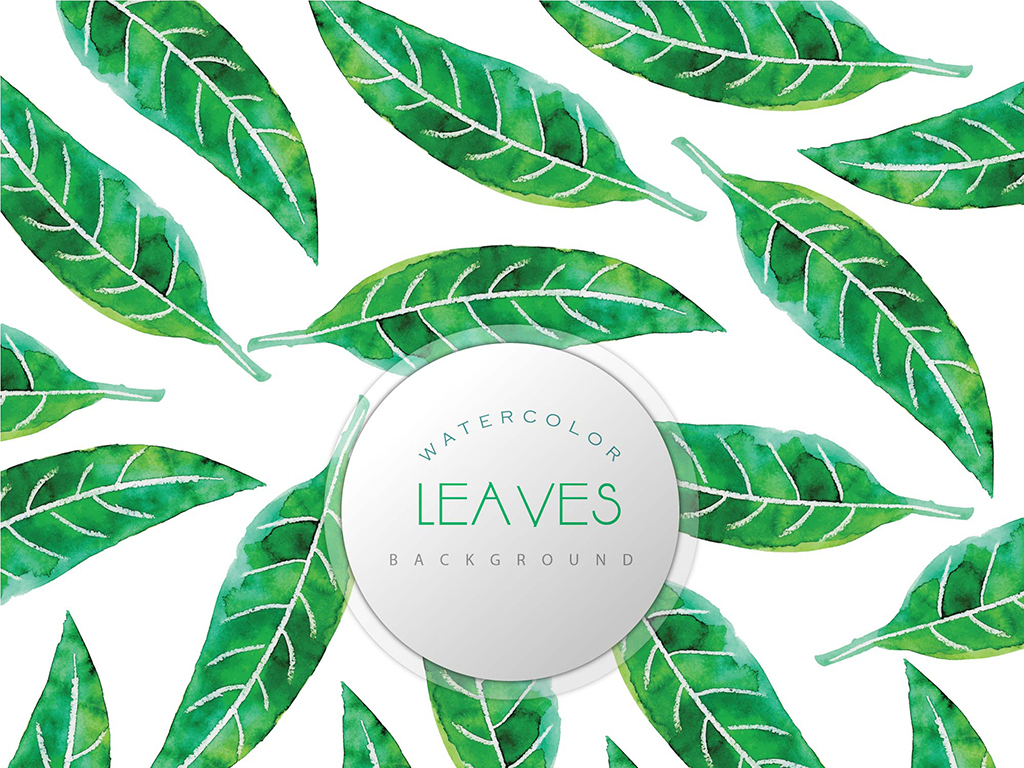 绿色手绘植物叶子卡片设计图片素材_模板下载(69.06mb