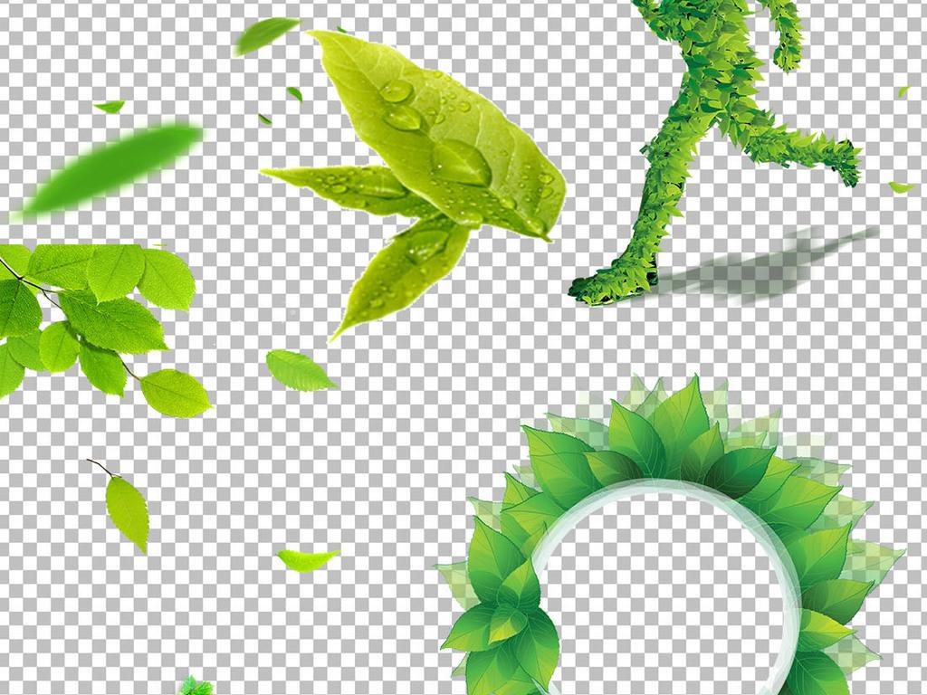 春天绿色树藤树叶花藤图片素材
