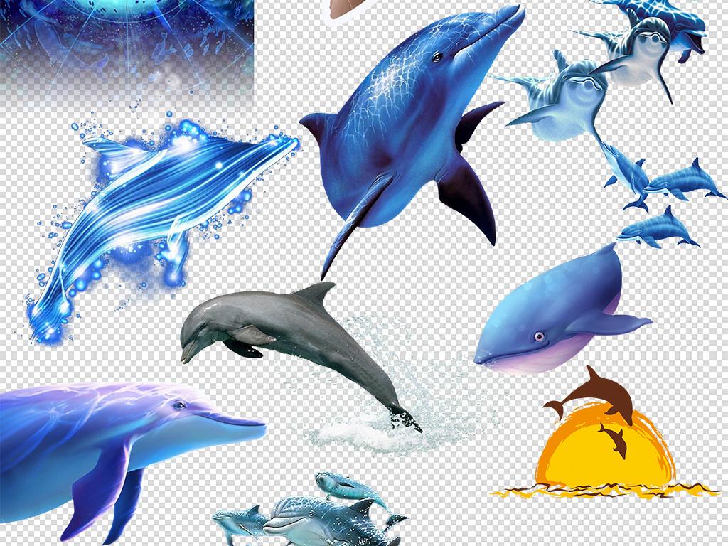 鲸鱼简笔画带颜色