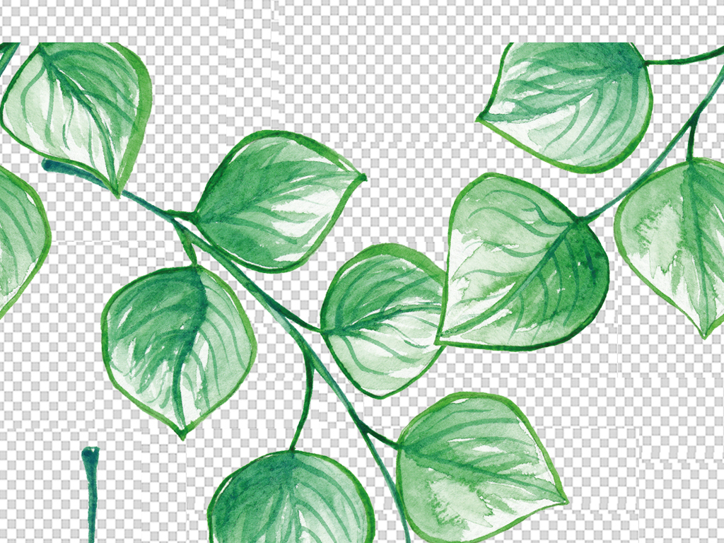 水彩手绘自然绿色枝叶花枝卡片填充图案背景