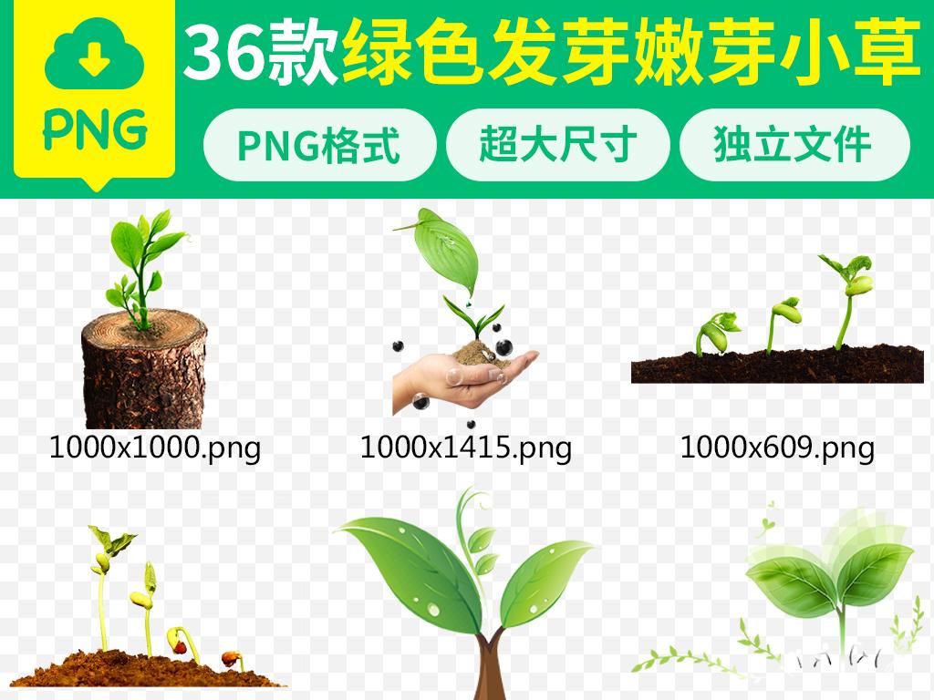 大树爱护守护保护爱心植树节小树苗成长种子绿色素材春天树苗小草种