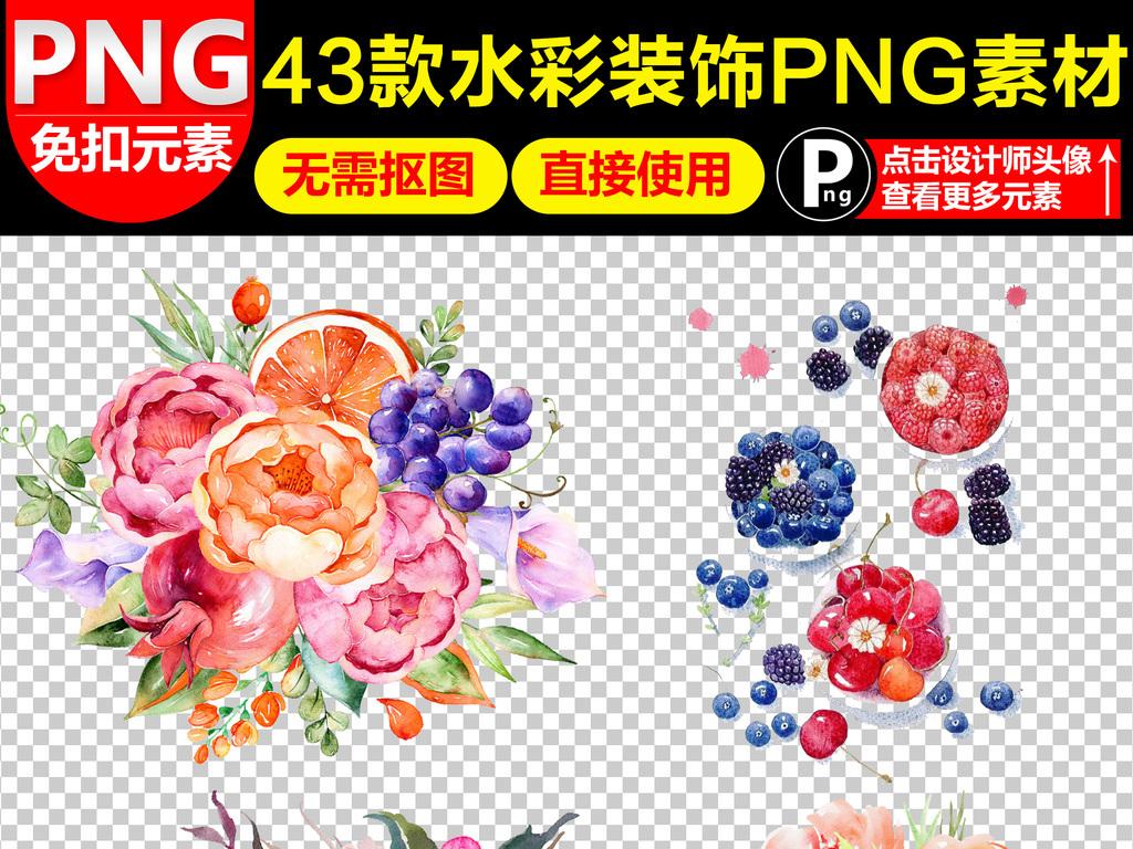 水果水彩红酒水彩酒瓶水彩花卉手绘花卉手绘红酒水彩花朵叶子素材彩绘
