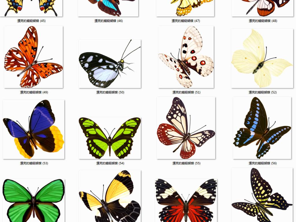 100多款蝴蝶蜻蜓png素材图片下载png素材-动物-我图网