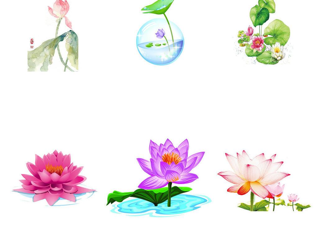 荷叶莲花卡通图片png2