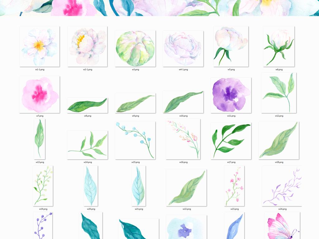 水彩手绘花卉花朵植物卡片邀请函图案合集png素材