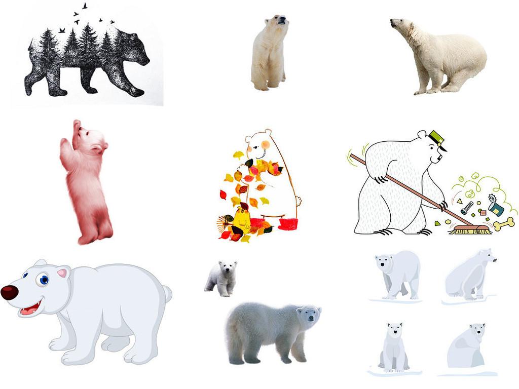 可爱北极熊图片素材1