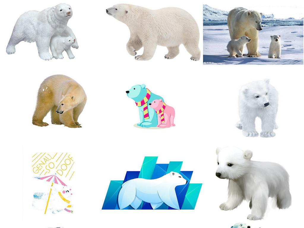 动物北极熊免抠png图片1