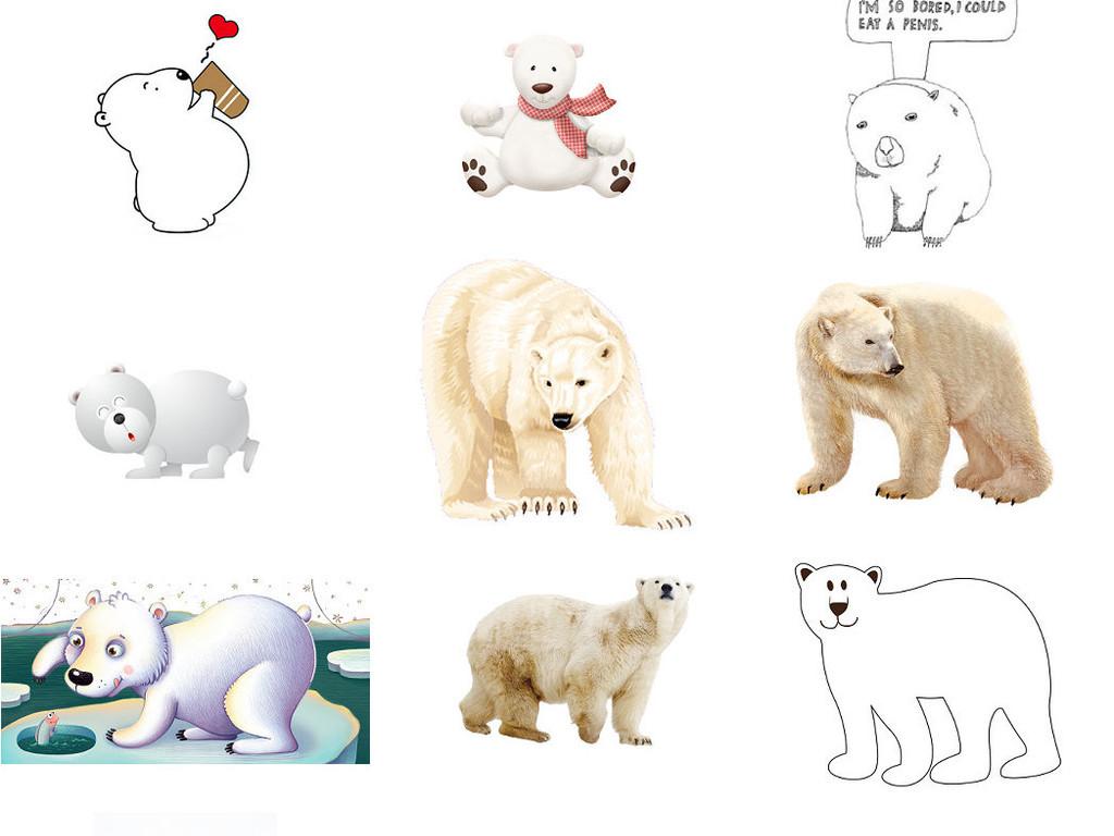 动物北极熊免抠png图片3