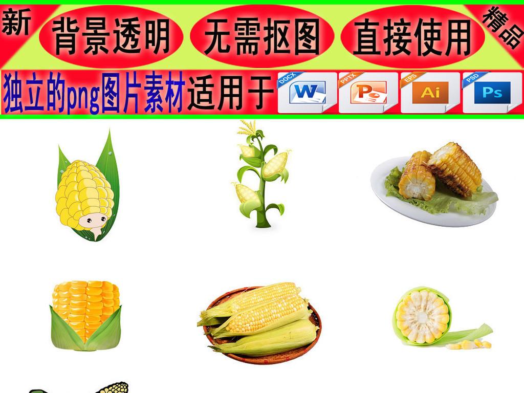 卡通手绘农作物玉米玉米杆玉米粒3