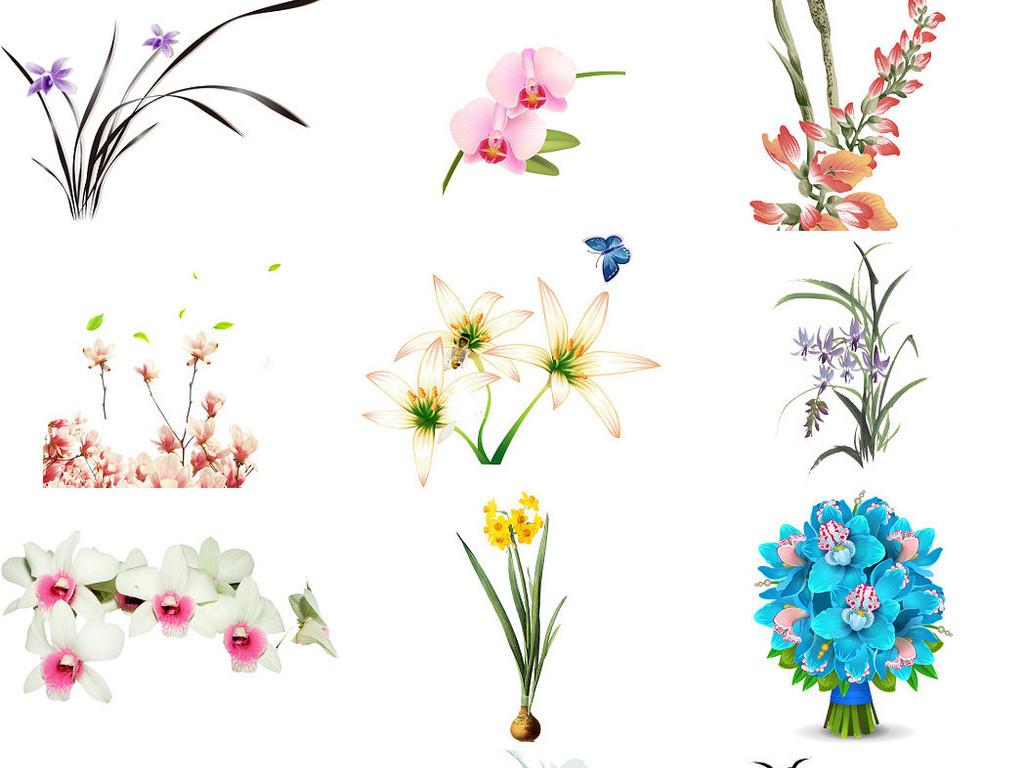 手绘彩绘木兰花玉兰植物素材1