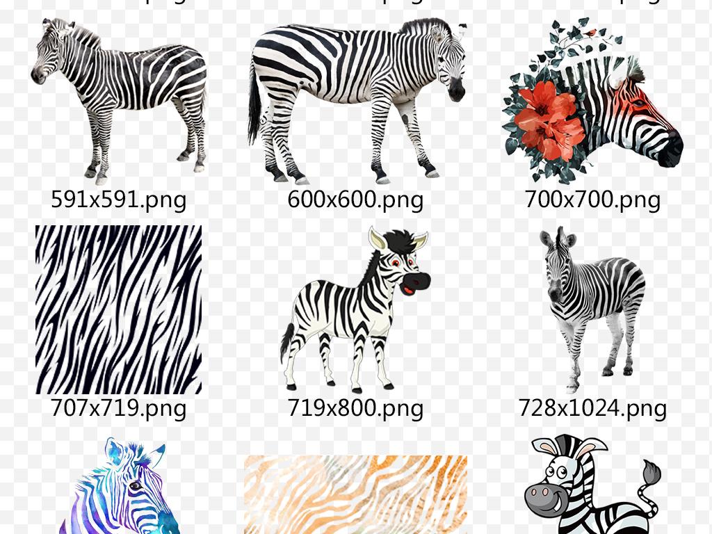 小动物手机壳图案设计儿童画手绘动物