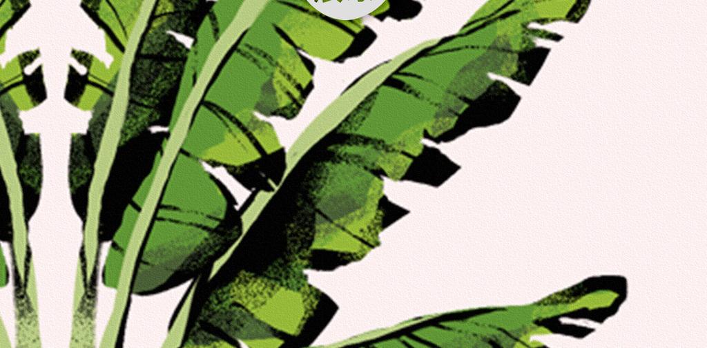 北欧小清新水彩手绘植物叶子装饰画