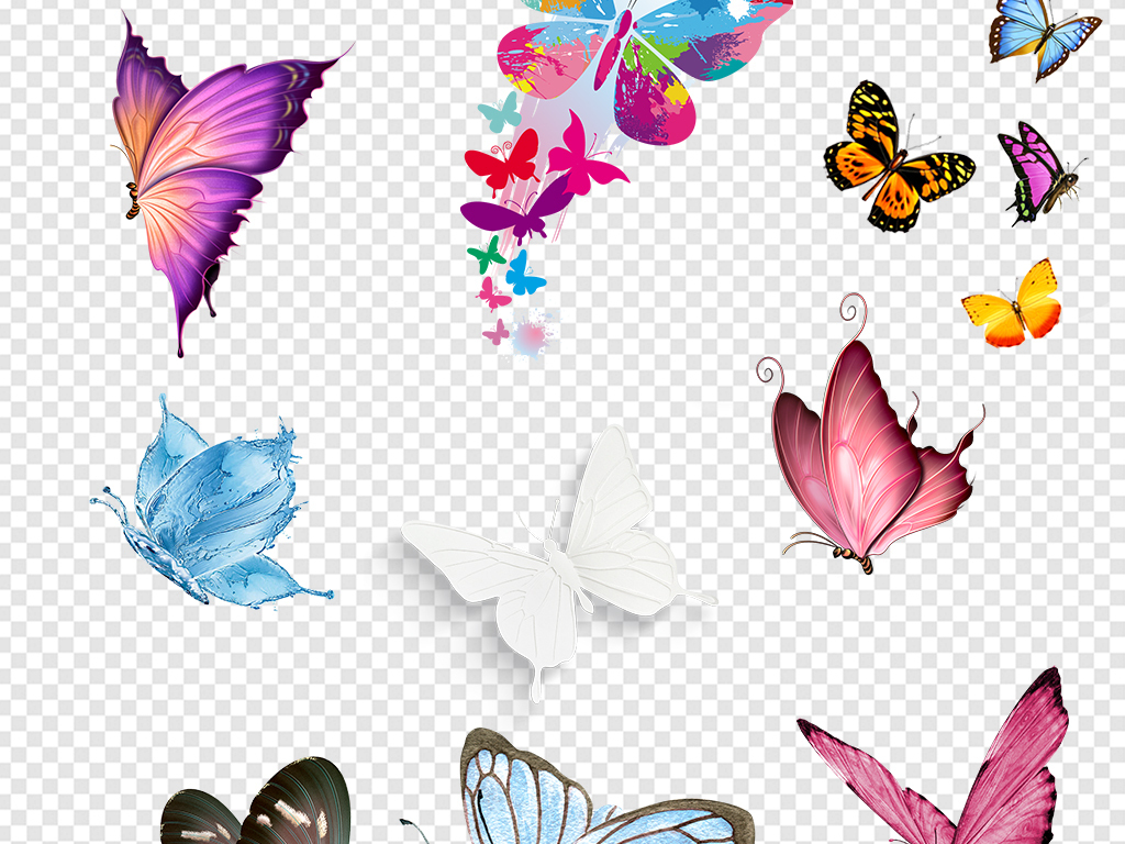 唯美蝴蝶彩蝶图片素材