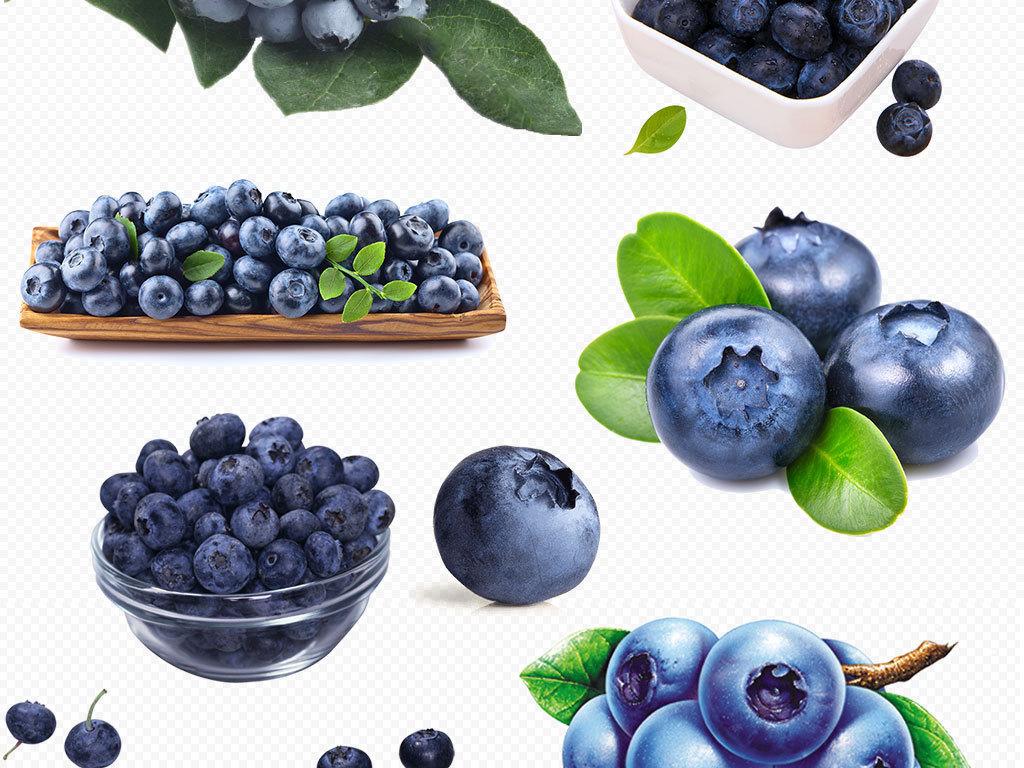 新鲜蓝莓手绘蓝莓绿叶设计png