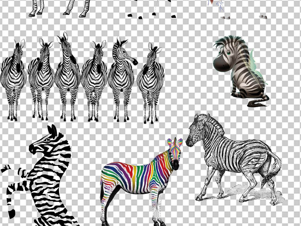卡通手绘动物斑马背景图片免扣png