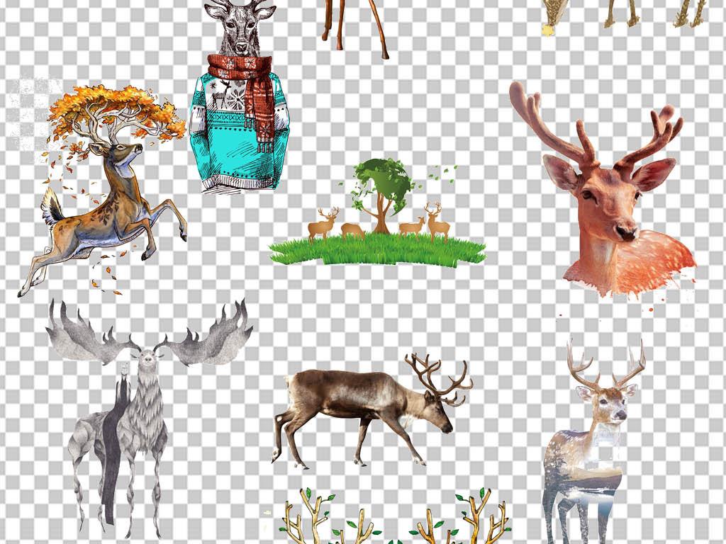 圣诞鹿手绘插画唯美鹿手绘创意麋鹿头