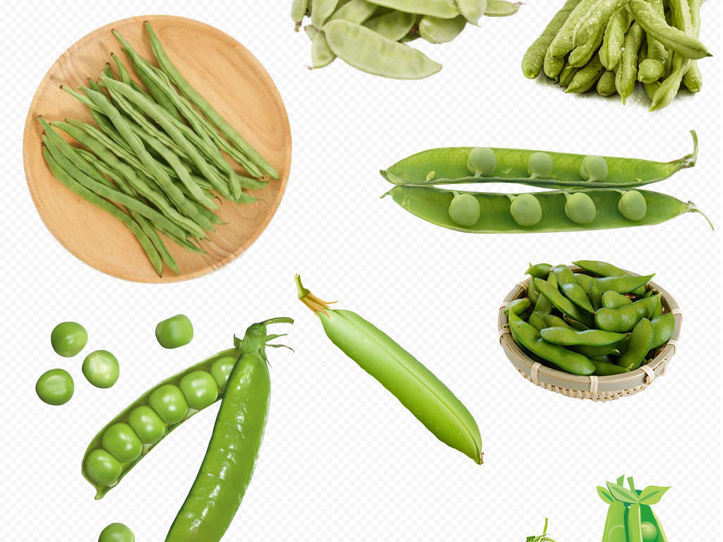 豆子绿色豆子卡通豆子卡通豌豆手绘