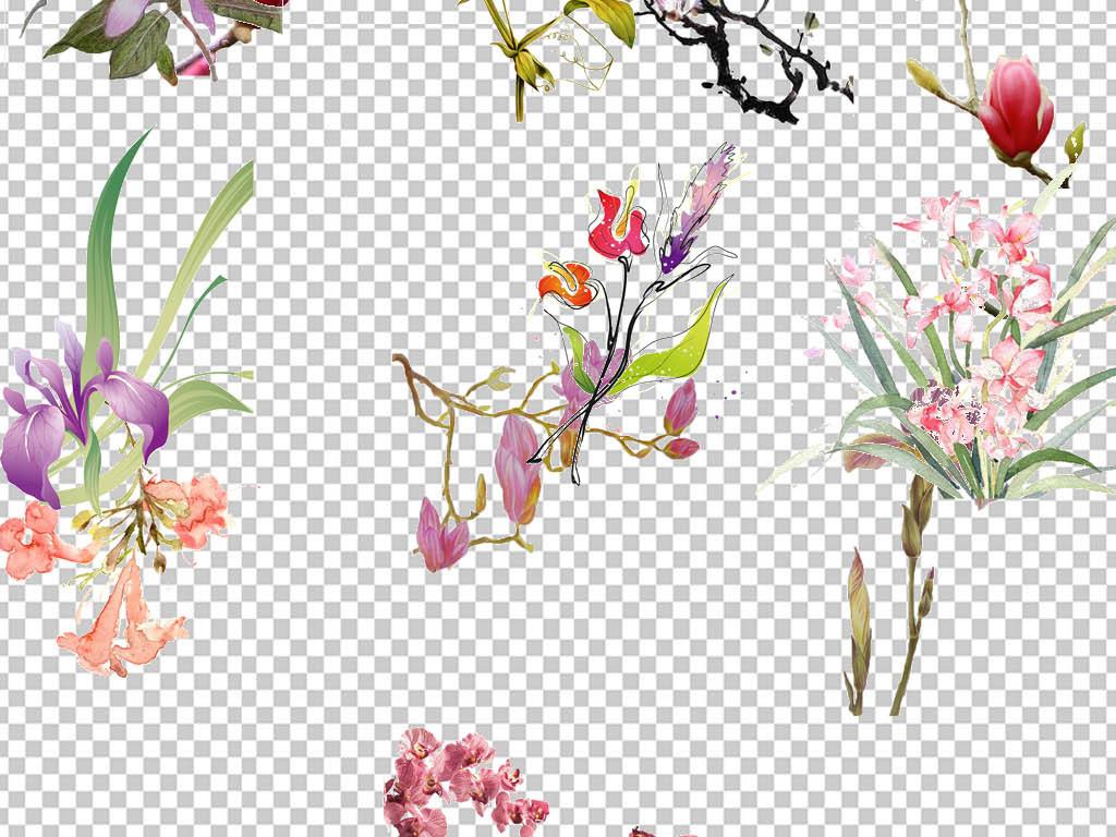 手绘中国风花卉花朵玉兰花元素