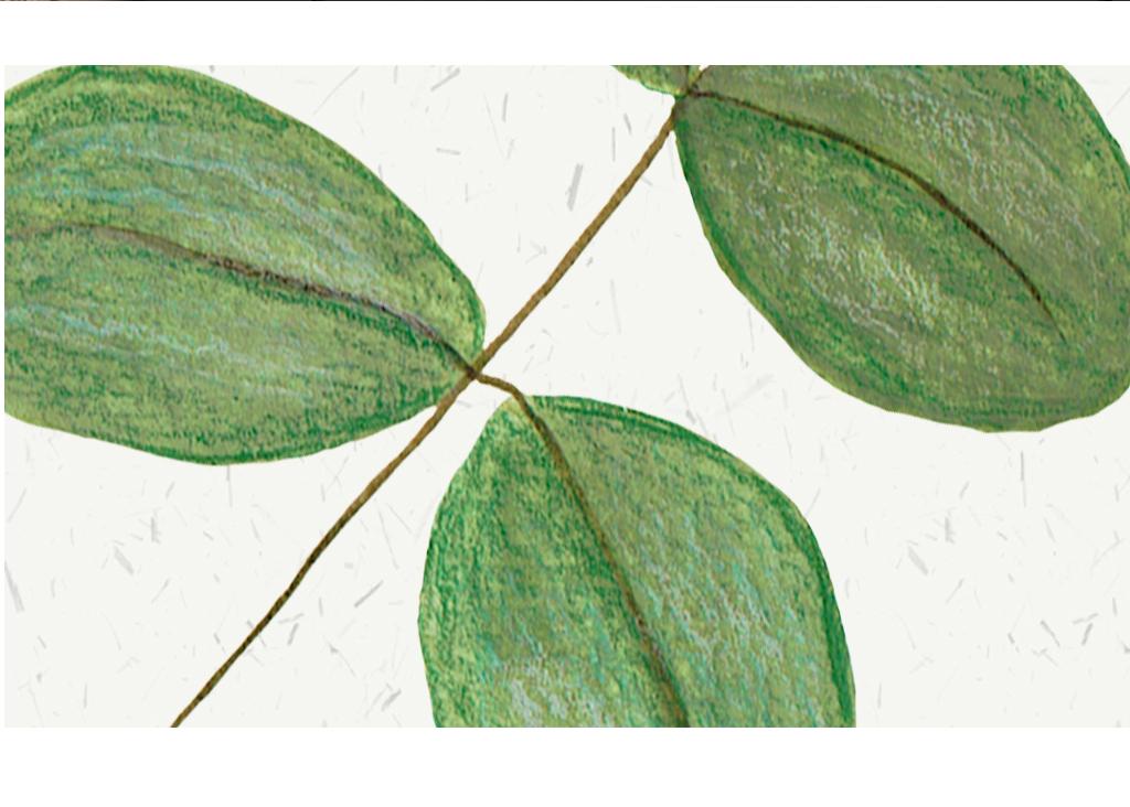新中式植物装饰画无框画植物叶子装饰画