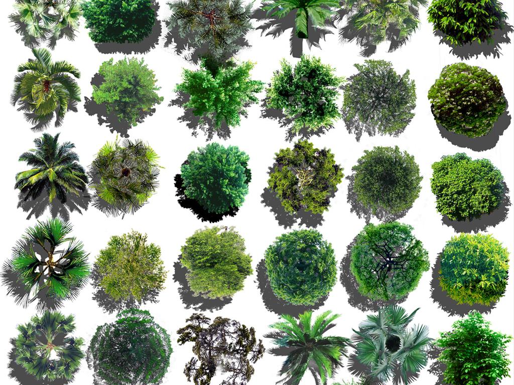 设计元素 自然素材 花卉 > 园林景观彩平图 园林景观后期psd分层素材