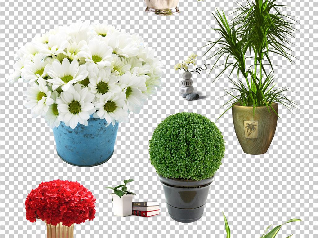 卡通盆栽素材可爱花盆png免扣图片素材