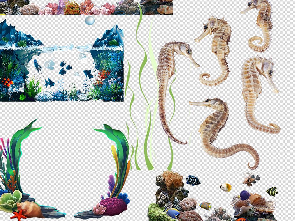卡通手绘海马与珊瑚免抠图片png素材