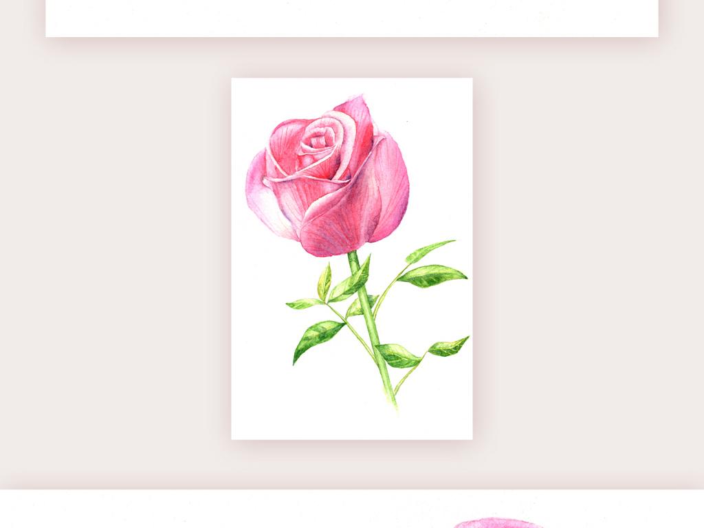 手绘粉色玫瑰花装饰画图片