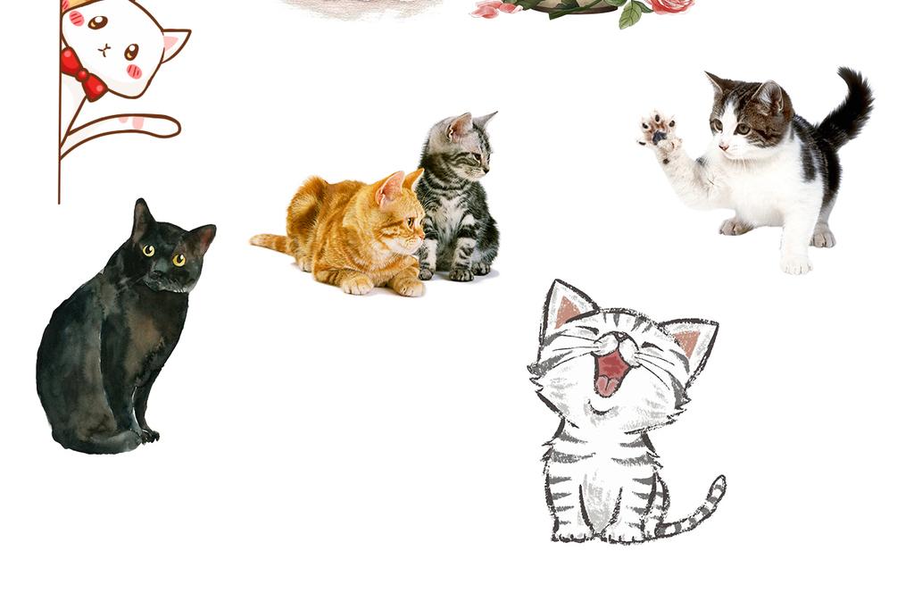 儿童画手绘插画矢量猫猫咪和狗可爱猫咪卡通猫咪卡通小