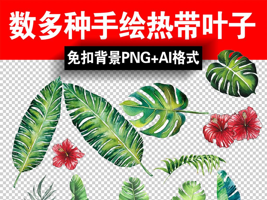 我图网提供精品流行北欧小清新美式手绘插画水彩绿植设计素材下载,作品模板源文件可以编辑替换,设计作品简介: 北欧小清新美式手绘插画水彩绿植设计素材 位图, RGB格式高清大图,使用软件为 Photoshop CS4(.psd) 芭蕉 龟背叶