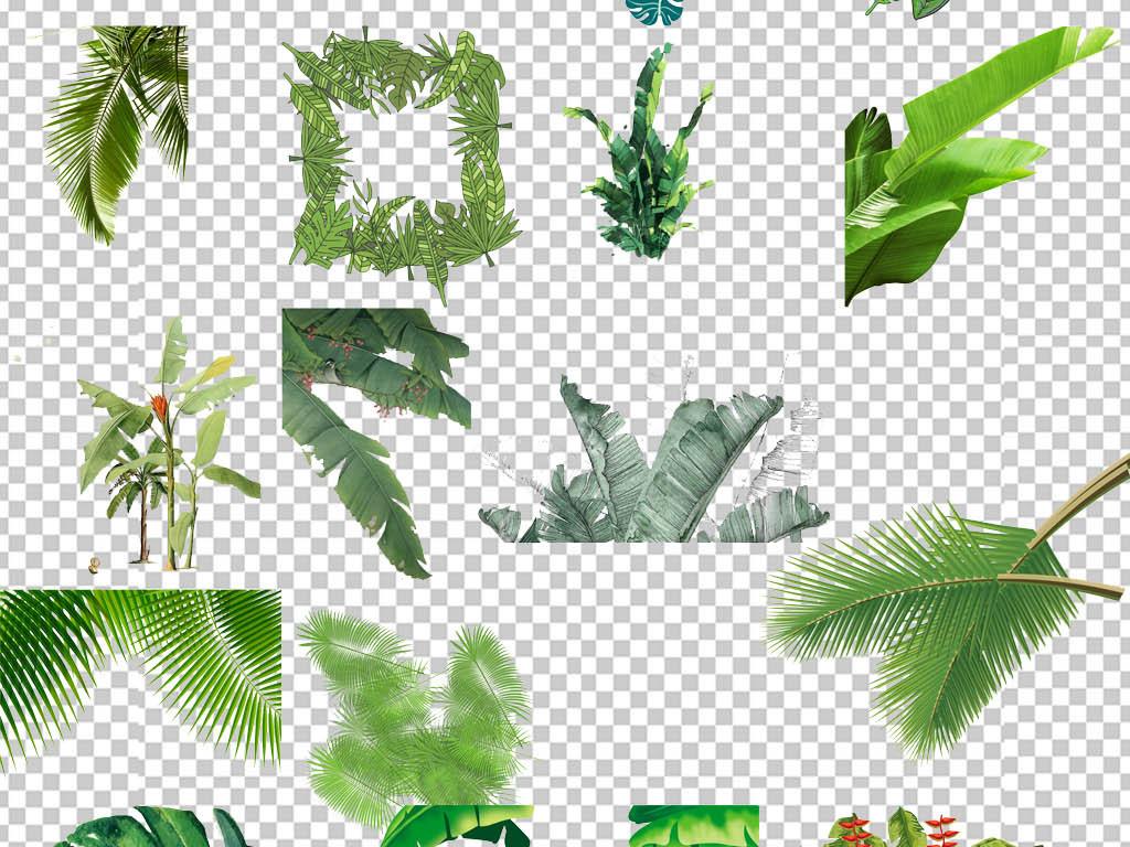 北欧简约小清新叶子植物无框装饰画元素