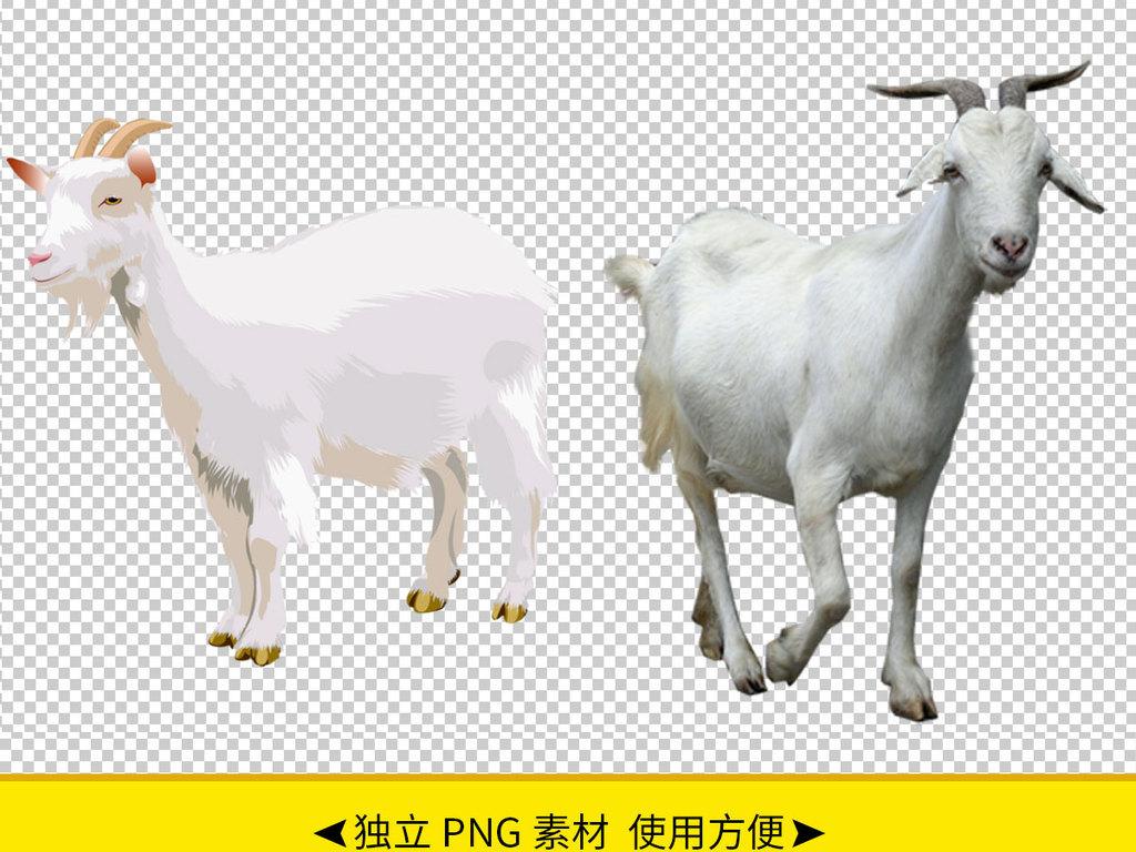 设计元素 自然素材 动物 > 各种山羊免抠png透明图层素材  版权图片