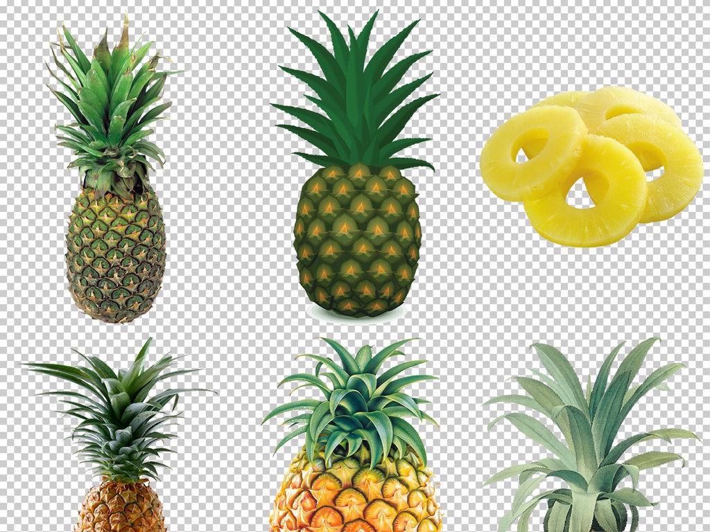凤梨菠萝卡通菠萝手绘菠萝素材