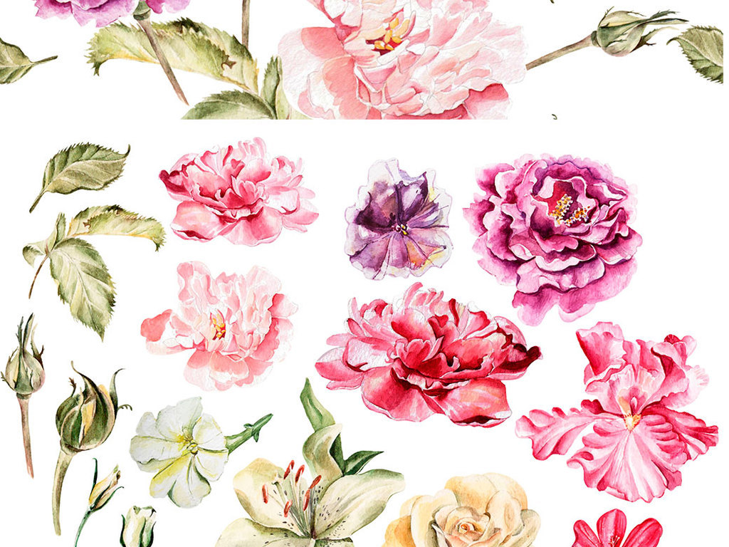 婚礼手账手绘水彩玫瑰花高清免抠png素材
